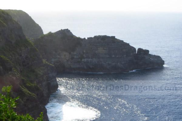 Le dragon de la Guadeloupe