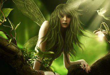 Comment voir une fée ou comment attirer des fées