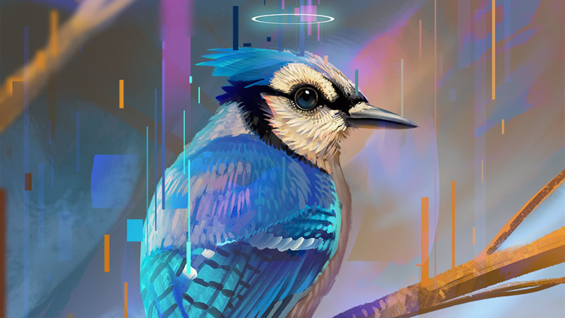Geai bleu symbole et signification de cet animal totem