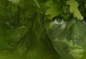 La porte elfique intérieure nous ouvre à nos aspects multidimensionnels